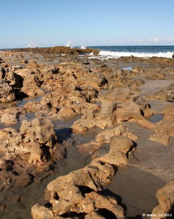 Coral Cove's natural limestone