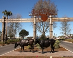 The Villages - Brownwood Town Square entrance