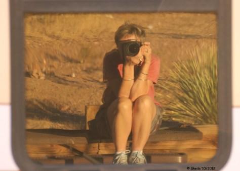 Reflection Shot - Coach Window