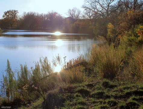 Sunset Colors ~On the South Llano River~ [this photo taken in November, 2011