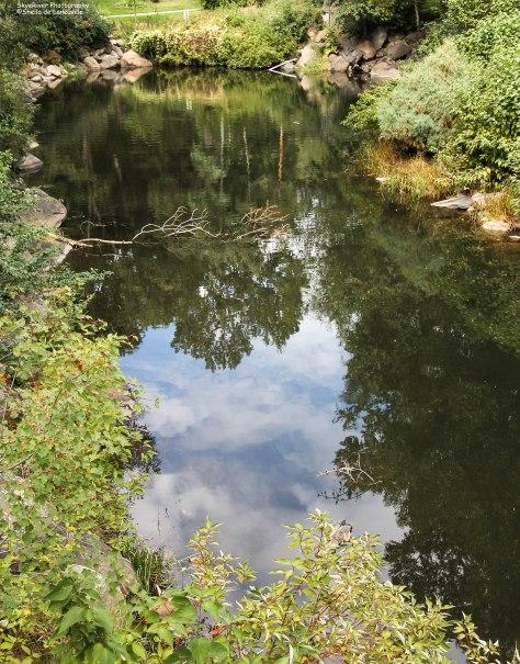 A Lagoon at its Center