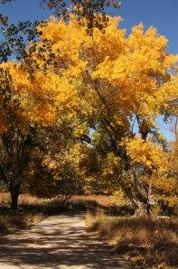 Lake Rita Blanca trail