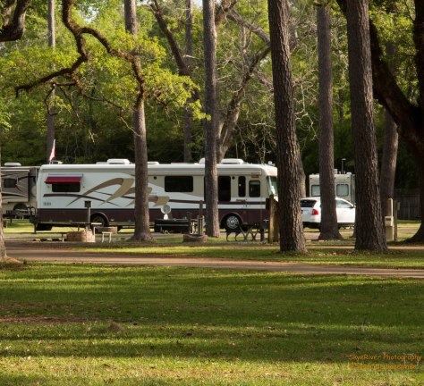 Our site at Fairview Riverside State Park