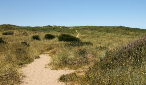 A short sandy trail to the ocean once you leave the paved trail.