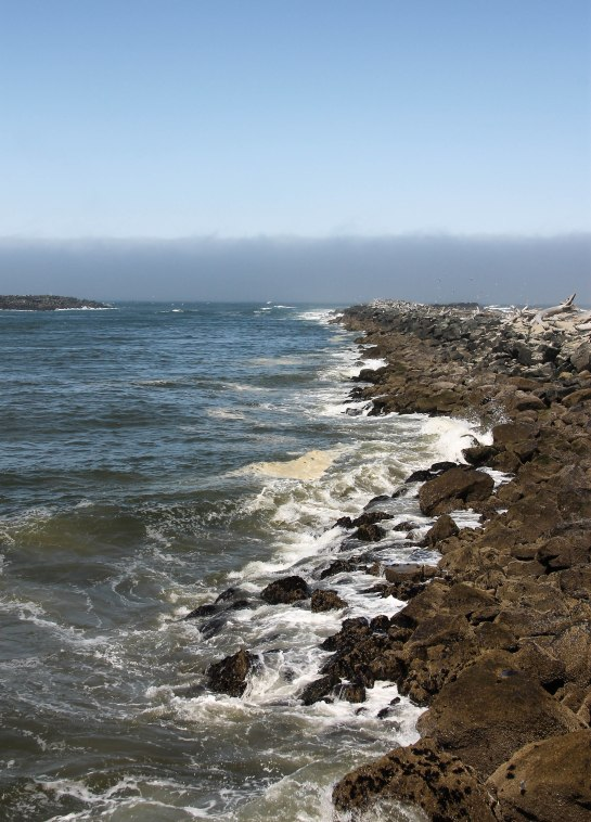 Shoreline by Coquille Lighthouse