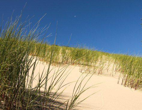 Moon Over Sand Dune