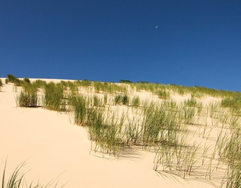 Dunescape