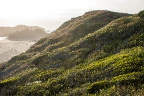 Ocean Hillside