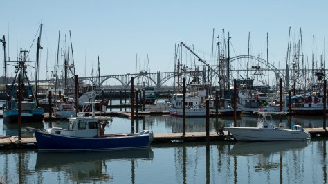 On the Bay in Newport, Oregon