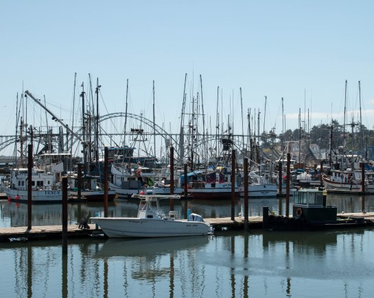 Fishing Boats docked at the historic Bayfront. Largest commercial frishing port in Oregon.