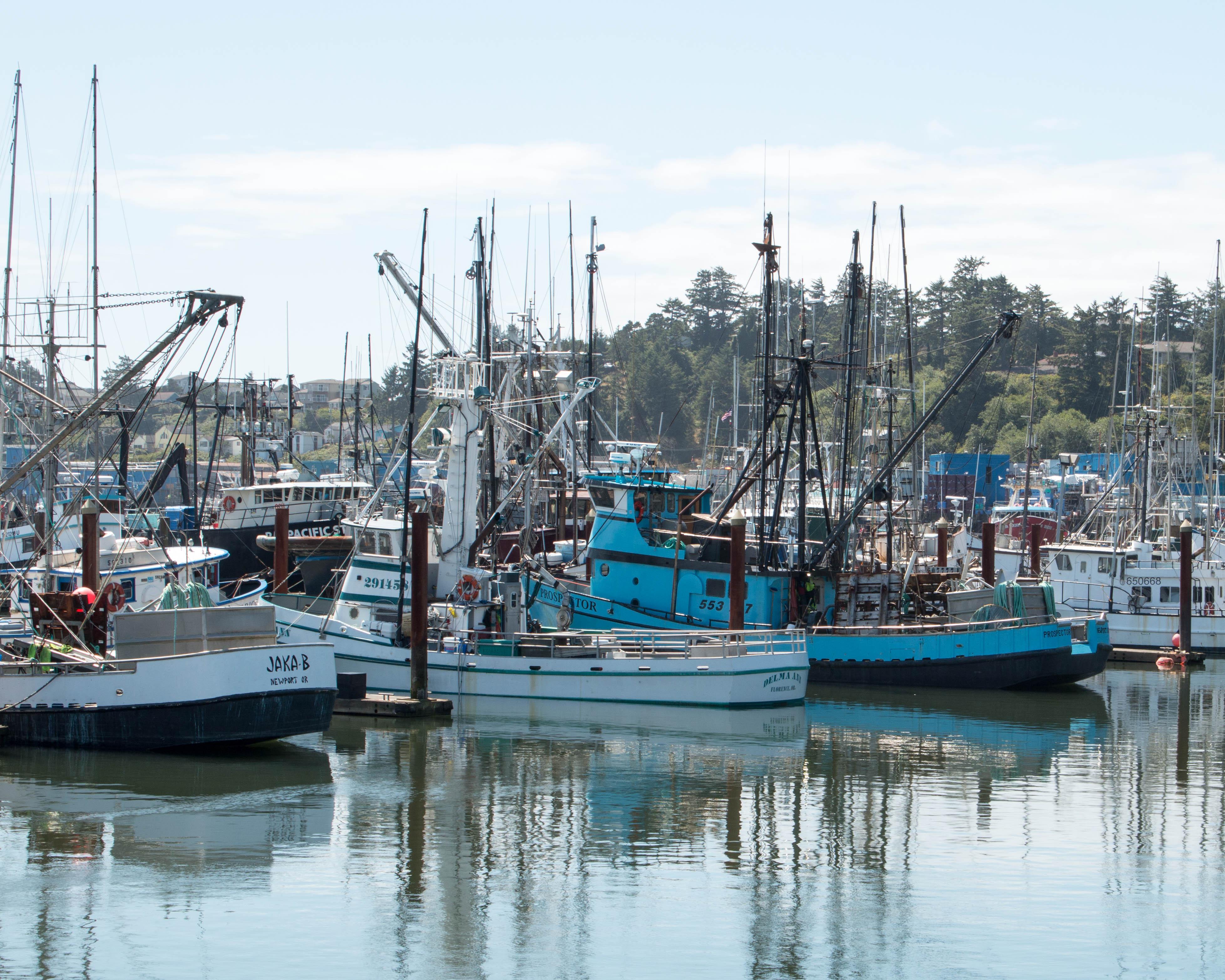 Yaquina bay newport oregon wolf song blog for Newport oregon fishing