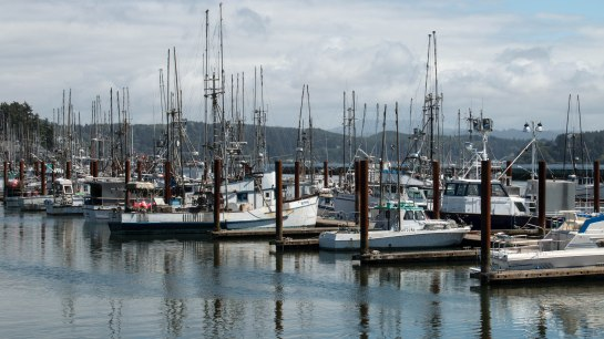 Bayfront, Newport, Oregon