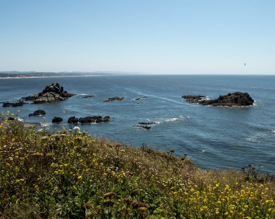 Yaquina Head Natural Area