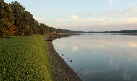 Lake Chicot, an oxbow remnant , a cutoff of the mighty Mississippi River