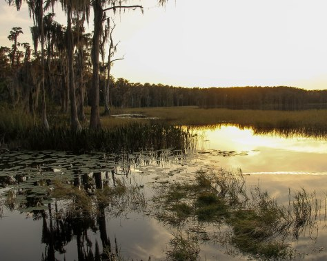 Lake Dixie