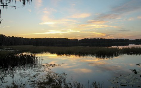 Sunset on Lake Dixie