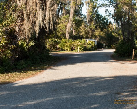 Paved roads at Little Maatee River State Park