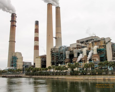 Big Bend Power Station, Tampa Bay