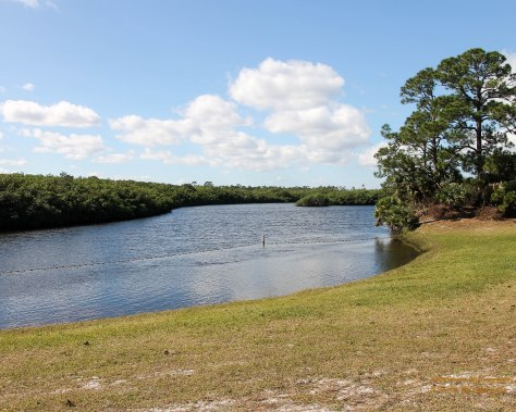 Swim, Canoe, Kayak, Fish, Boat, in the Loxahatchee River