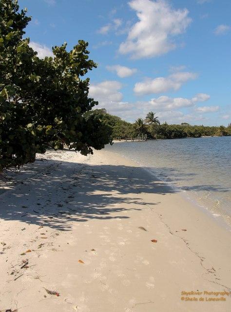 Beach located on the Intracoastal Canal near Hobe Sound, Florida