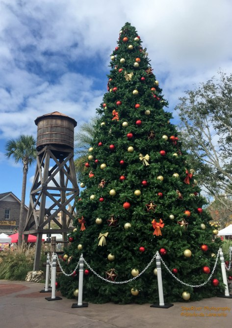 The Brownsville Town Square Christmas Tree