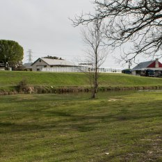 Red Barn, grounds with a dog park behind