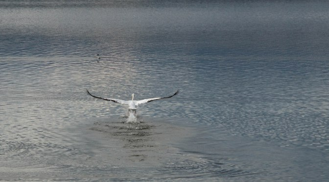 ~Photos of Lake Loveland